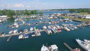 Buffalo Aerial Photography